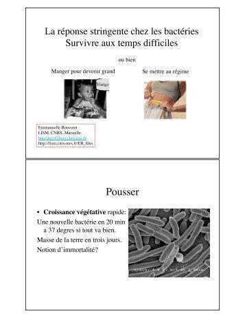cours E. Bouveret - Département de biologie