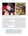 $ER 3TUNDEN (ENGSTFOHLEN U - Peter Richterich - Page 5