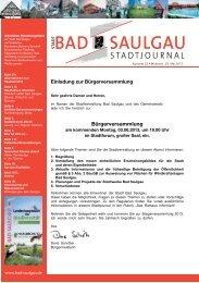 Stadtjournal Ausgabe 22/2013 - Stadt Bad Saulgau