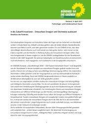 In die Zukunft investieren – Erneuerbare Energien und Stromnetze ...