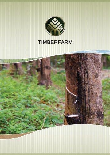 Kautschuk hält die Welt in Bewegung - TIMBERFARM GmbH