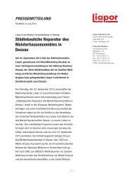 Städtebauliche Reparatur des Meisterhausensembles in ... - Liapor