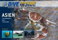 Web-Version (10.9 MB) - DiveInside