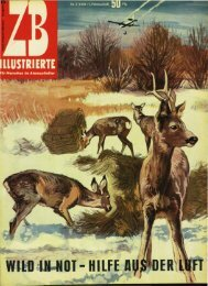 Magazin 195803