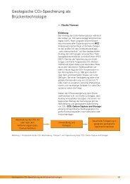 Geologische CO2-Speicherung.pdf - Landesamt für Landwirtschaft ...