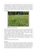 Die Gerlinger Heide – Bestimmung des Lebensraums ... - Page 3