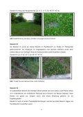 Die Gerlinger Heide – Bestimmung des Lebensraums ... - Page 6