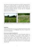 Die Gerlinger Heide – Bestimmung des Lebensraums ... - Page 7