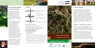 Boden - Landesamt für Landwirtschaft, Umwelt und ländliche ...