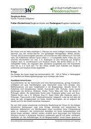 Merkblatt Sorghumarten - Bioenergie-Regionen