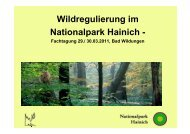 Wildregulierung im Nationalpark Hainich - - EUROPARC Deutschland