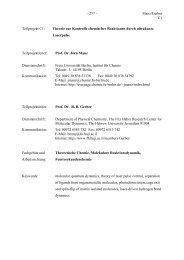 Manz/Gerber C1 Teilprojekt C1 - Freie Universität Berlin