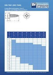 DIN 7981 (ISO 7049) - BV Bohrenfeldt Gmbh