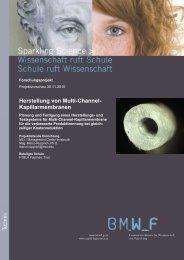 Herstellung von Multi-Channel ... - Sparkling Science