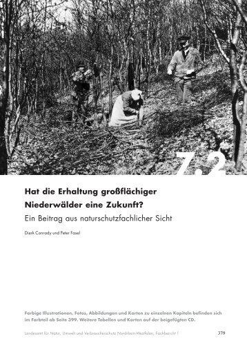 Hat die Erhaltung großflächiger Niederwälder eine ... - LANUV NRW