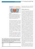 Familiäre hypertrophe Kardiomyopathie: Genetik und molekulare ... - Seite 2