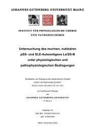 verzeichnisse - ArchiMeD - Johannes Gutenberg-Universität Mainz