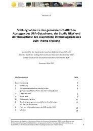 Stellungnahme zu den geowissenschaftlichen ... - InfoGEO.de
