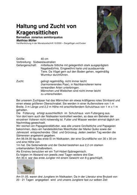 Haltung und Zucht von Kragensittichen - Vogelzuchtgrabow.de