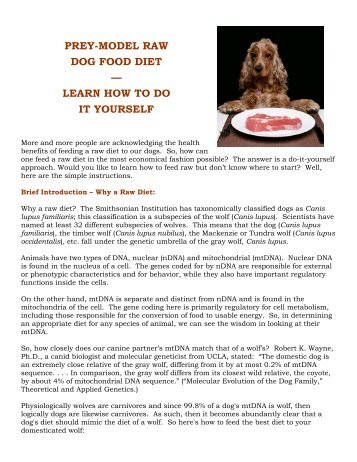 Getting your dog and cat started on a raw food bravo raw diet prey model raw dog food diet learn how to do solutioingenieria Images
