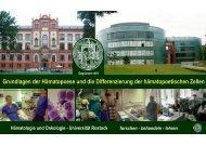 pdf1 - Hämatologie und Onkologie Rostock