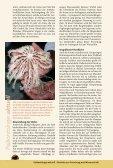 Download-PDF - Fossilien - Seite 2