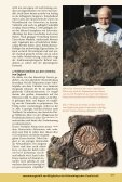 Download-PDF - Fossilien - Seite 5