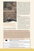 Download-PDF - Fossilien - Seite 7