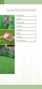 Die Schweizer Profi-Tipps lebendiger Teppich - Roth Pflanzen AG - Seite 2