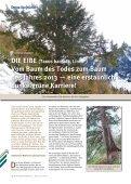 Baum des Jahres - Steiermärkische Landesforste - Seite 3
