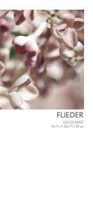 Garten Eden – Blütenträume aus Porzellan - Meissen - Seite 7