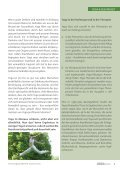 YogaVision-12 - Antje Kirchknopf - Seite 5