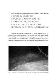 Ostendorp, W., Mainberger, M., Schmieder, K. & Peintinger, M.