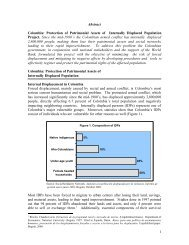 Protection of Patrimonial Assets _Final_ V2 - Internal Displacement ...