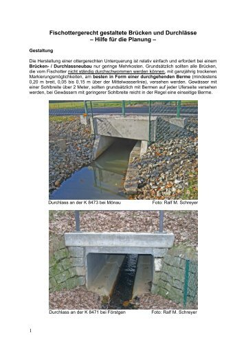 Fischottergerecht gestaltete Brücken und Durchlässe – Hilfe für die ...