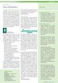 Zum Download im PDF-Format - Deutsches Verkehrsforum - Page 7