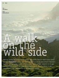 Druckversion: Südafrika - A walk on the wild side - 4-Seasons.de