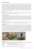 Mischpflanzungen - Seite 3