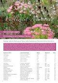 Mischpflanzungen - Seite 4