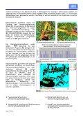 Mathematisch-physikalische Grundlagen und ... - die wettiner - Seite 7