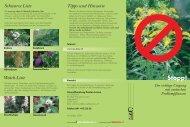 Umgang mit Neophyten - öko-forum Umweltberatung Luzern