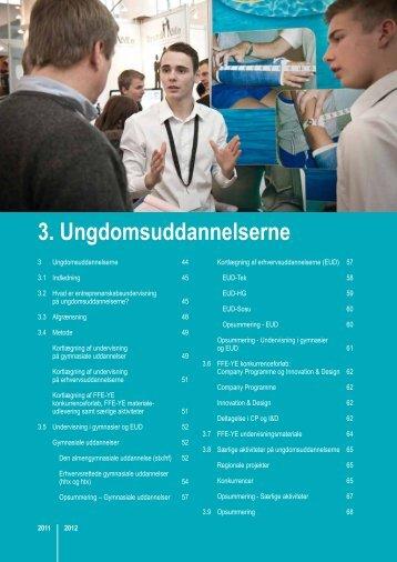 3. Ungdomsuddannelserne