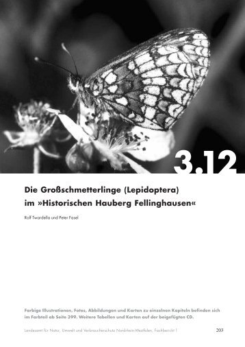 Die Großschmetterlinge (Lepidoptera) im ... - LANUV NRW