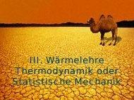 III. Wärmelehre Thermodynamik oder Statistische Mechanik