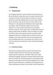 Dokument 3.pdf