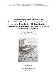 Juchtenkäfer-Gutachten / Claus Wurst