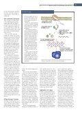 Kampen mod proteinklumperne - Page 2