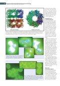 Kampen mod proteinklumperne - Page 3