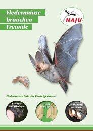 Fledermäuse brauchen Freunde - NAJU