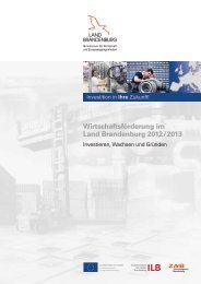 Wirtschaftsförderung im Land Brandenburg 2012/2013